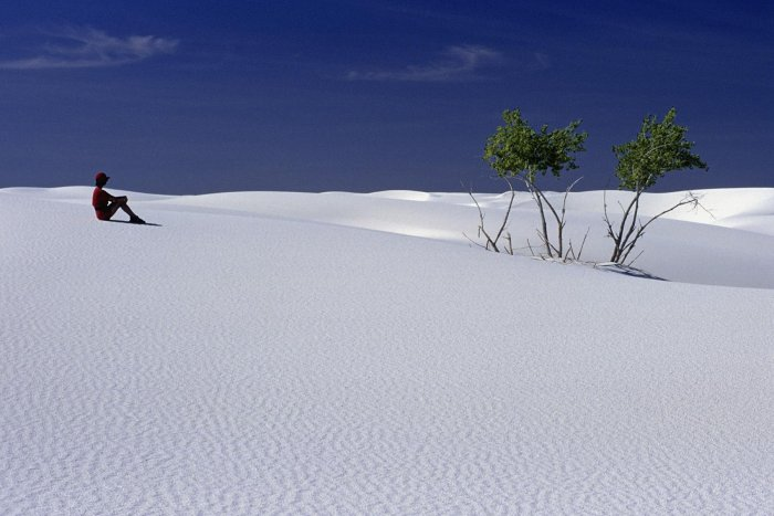 White Sands National Monument, New Mexico. Désert de gypse. (V 08532)