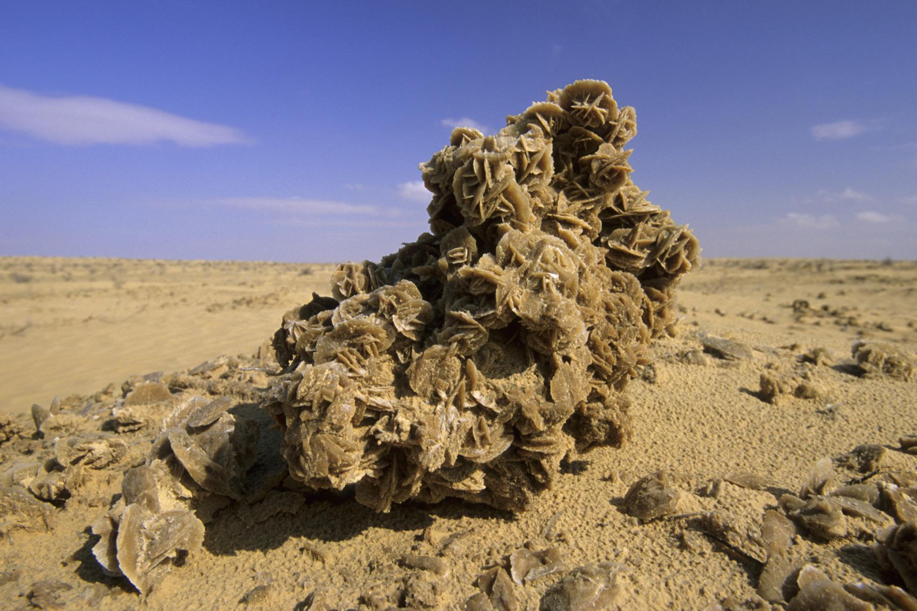 photo sud tunisien rose des sables dans la r gion d 39 el faouar philippe crochet photographe. Black Bedroom Furniture Sets. Home Design Ideas