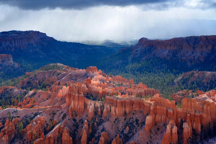 Bryce Canyon (Utah, USA)- The Cathedral (VO-14-0273 )