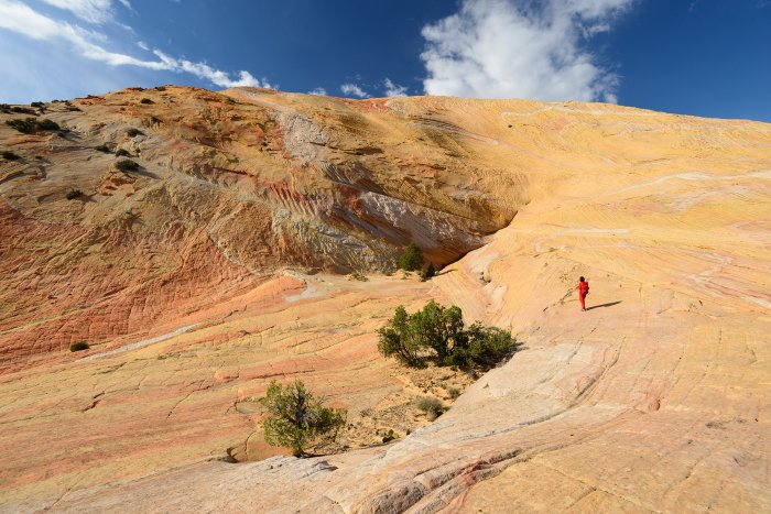 Grand Staircase Escalante National Monument (Utah, USA)- versant sud de Yellow Rock(VO-14-0697)