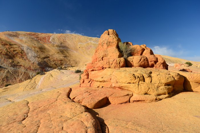 Grand Staircase Escalante National Monument (Utah, USA)- versant sud de Yellow Rock(VO-14-0703)