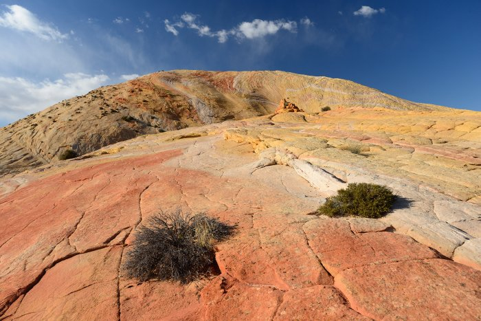 Grand Staircase Escalante National Monument (Utah, USA)- versant sud de Yellow Rock(VO-14-0709)