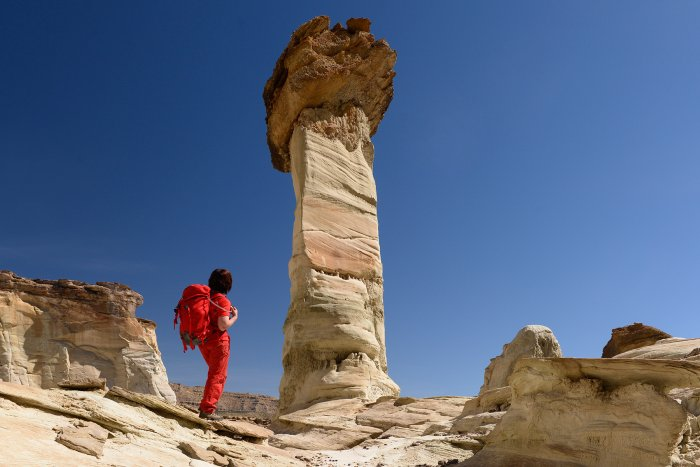 Grand Staircase Escalante National Monument (Utah, USA) - Wahweap Hoodoos(VO-14-0973)