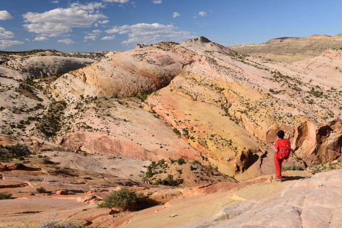 Grand Staircase Escalante National Monument (Utah, USA)- panorama depuis le sommet de Yellow Rock(VO-14-1073)