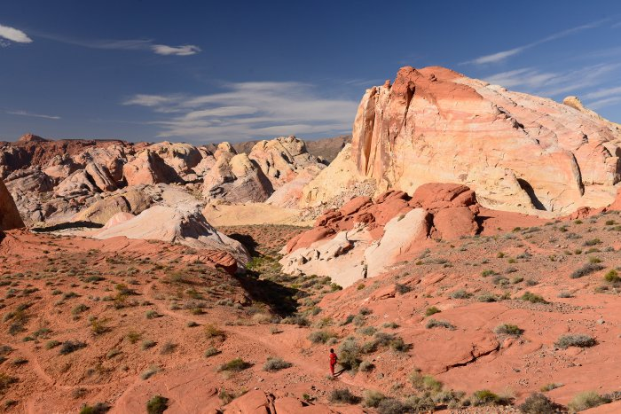 Valley of Fire State Park (Nevada, USA)- secteur oriental de White Domes(VO-14-1390)