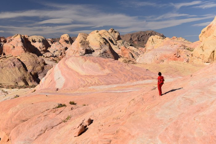 Valley of Fire State Park (Nevada, USA)- secteur oriental de White Domes(VO-14-1394)