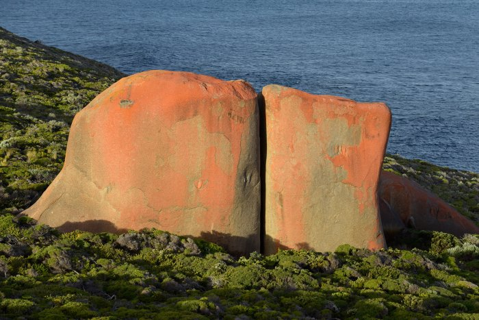 Kangaroo Island (South Australia, Australie) - Remarkable Rocks dans Flinders Chase National Park : granites colorés le long de la côte(VO-17-0927)
