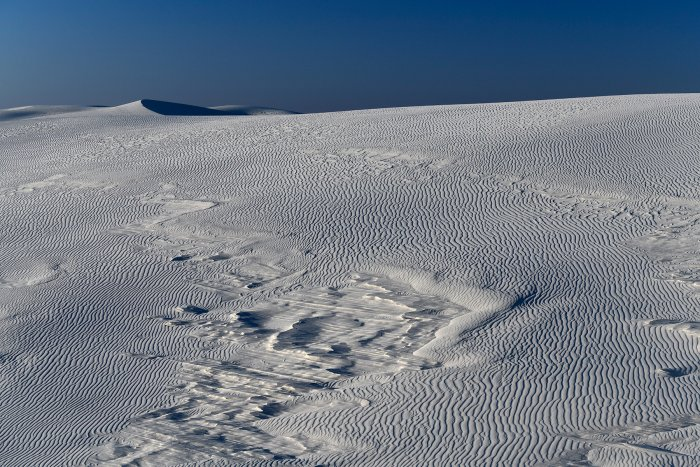 White Sands National Park (Nouveau Mexique, USA) - Dunes de sable blanc de gypse avec strates de gypse(VO-18-0260)
