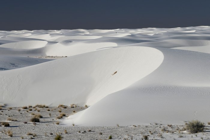 White Sands National Park (Nouveau Mexique, USA) - Grande dune de sable blanc de gypse en forme de croissant (VO-18-0293)