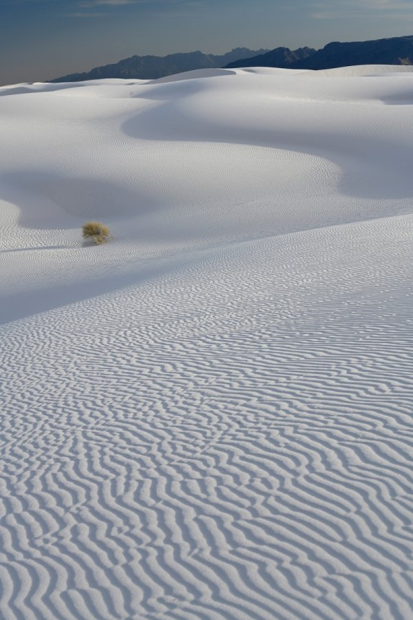 White Sands National Park (Nouveau Mexique, USA) - Dune de sable blanc de gypse avec rides (montagnes en fond)(VO-18-0375)