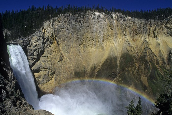 Yellowstone National Park. Grand Canyon: Lower Fall avec arc-en-ciel.(V 05928)