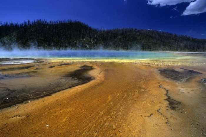 Yellowstone National Park. Prismatic Spring.(V 06042)