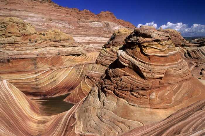 Paria Canyon (Utah). The Waves : vue d'ensemble.(V 09581)
