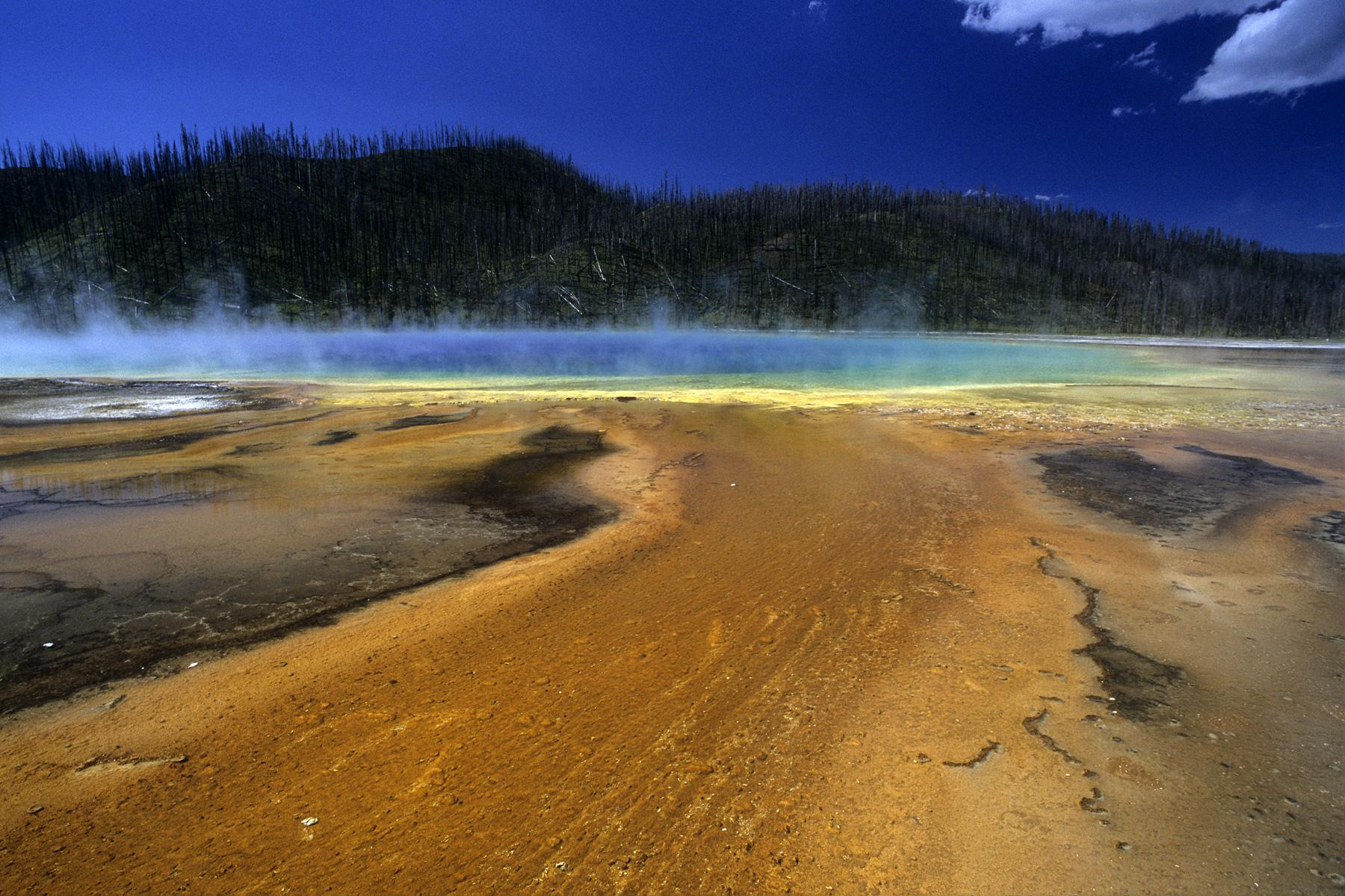 Yellowstone National Park. Prismatic Spring.